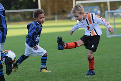 "HBC Voetbal • <a style=""font-size:0.8em;"" href=""http://www.flickr.com/photos/151401055@N04/50366052253/"" target=""_blank"">View on Flickr</a>"