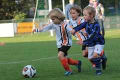 "HBC Voetbal • <a style=""font-size:0.8em;"" href=""http://www.flickr.com/photos/151401055@N04/50366054118/"" target=""_blank"">View on Flickr</a>"
