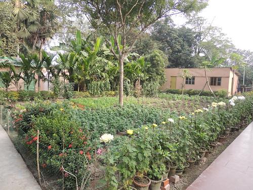 Ramakrihsna Math Naora (107)