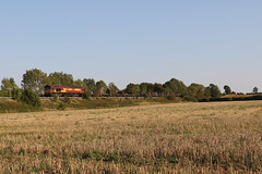 Photo of Covid secure!   DB Cargo 66125 Class 66 General Motors/EMD Co-Co