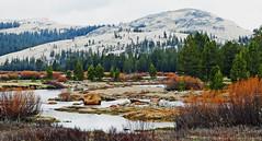 Yosemite High Country, CA  2015