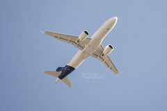 Photo of Lufthansa D-AINY