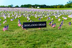 2020.09.23 Covid Memorial Project, Washington, DC USA 267 17018