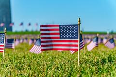 2020.09.23 Covid Memorial Project, Washington, DC USA 267 17022