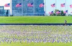 2020.09.23 Covid Memorial Project, Washington, DC USA 267 17012