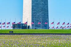 2020.09.23 Covid Memorial Project, Washington, DC USA 267 17015