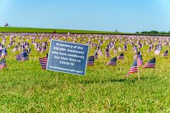 2020.09.23 Covid Memorial Project, Washington, DC USA 267 17020