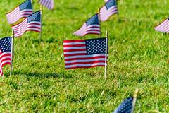 2020.09.23 Covid Memorial Project, Washington, DC USA 267 17013