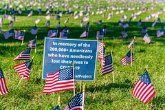 2020.09.23 Covid Memorial Project, Washington, DC USA 267 17019
