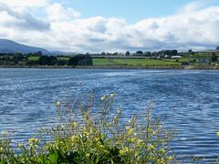Photo of Murlough Bay, County Down, Northern Ireland