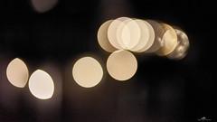 2020-09-24 20.37.30 - Limeligth, Et eller andet, 268-366, Uge 39, Assentoft, Randers - _DSC4015 - ©Anders Gisle Larsson