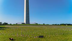 2020.09.23 Ruth Bader Ginsburg at the Supreme Court, Washington, DC USA 267 105212