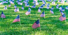 2020.09.23 Ruth Bader Ginsburg at the Supreme Court, Washington, DC USA 267 105231