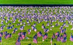 2020.09.23 Ruth Bader Ginsburg at the Supreme Court, Washington, DC USA 267 105217