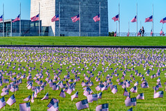 2020.09.23 Ruth Bader Ginsburg at the Supreme Court, Washington, DC USA 267 105219