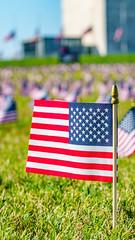 2020.09.23 Covid Memorial Project, Washington, DC USA 267 17023