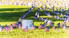 2020.09.23 Ruth Bader Ginsburg at the Supreme Court, Washington, DC USA 267 105228