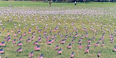 2020.09.23 Ruth Bader Ginsburg at the Supreme Court, Washington, DC USA 267 105255