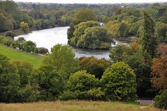 Photo of The River Thames