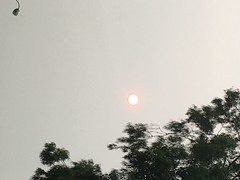 The Smoky skies from the fires Sept 11th 2020