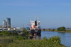 Photo of MSC Tanker