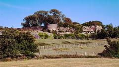 2020 08 04_4553_ Les remparts de Montreuil-sur-Mer