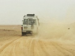 Racing in the desert, Hurghada, Egypt, 埃及