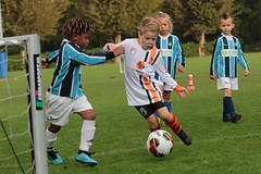 """HBC Voetbal • <a style=""""font-size:0.8em;"""" href=""""http://www.flickr.com/photos/151401055@N04/50392425648/"""" target=""""_blank"""">View on Flickr</a>"""