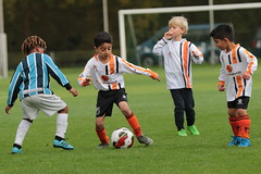 """HBC Voetbal • <a style=""""font-size:0.8em;"""" href=""""http://www.flickr.com/photos/151401055@N04/50392426083/"""" target=""""_blank"""">View on Flickr</a>"""
