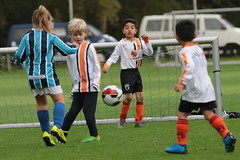 """HBC Voetbal • <a style=""""font-size:0.8em;"""" href=""""http://www.flickr.com/photos/151401055@N04/50392426248/"""" target=""""_blank"""">View on Flickr</a>"""