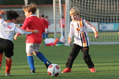 """HBC Voetbal • <a style=""""font-size:0.8em;"""" href=""""http://www.flickr.com/photos/151401055@N04/50392435738/"""" target=""""_blank"""">View on Flickr</a>"""