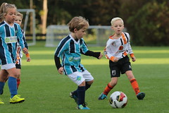 """HBC Voetbal • <a style=""""font-size:0.8em;"""" href=""""http://www.flickr.com/photos/151401055@N04/50393112266/"""" target=""""_blank"""">View on Flickr</a>"""