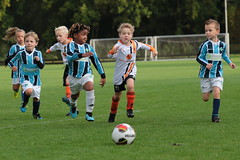 """HBC Voetbal • <a style=""""font-size:0.8em;"""" href=""""http://www.flickr.com/photos/151401055@N04/50393113666/"""" target=""""_blank"""">View on Flickr</a>"""