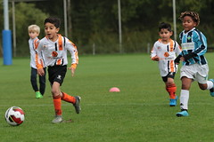 """HBC Voetbal • <a style=""""font-size:0.8em;"""" href=""""http://www.flickr.com/photos/151401055@N04/50393115186/"""" target=""""_blank"""">View on Flickr</a>"""