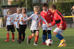 """HBC Voetbal • <a style=""""font-size:0.8em;"""" href=""""http://www.flickr.com/photos/151401055@N04/50393294412/"""" target=""""_blank"""">View on Flickr</a>"""
