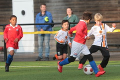 """HBC Voetbal • <a style=""""font-size:0.8em;"""" href=""""http://www.flickr.com/photos/151401055@N04/50393295342/"""" target=""""_blank"""">View on Flickr</a>"""