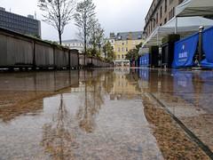 Photo of Rainy Day Reflections