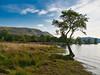 Arthur's Pike & Ullswater