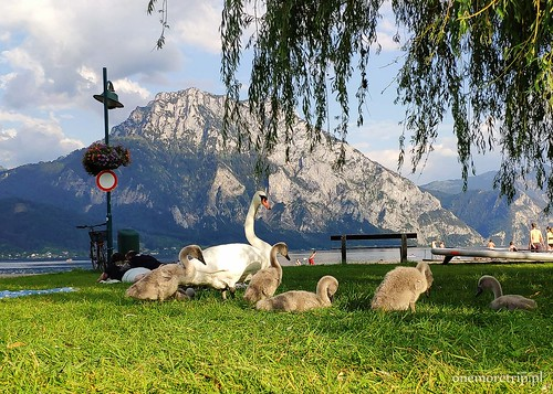 200722-182921-Traunsee 8