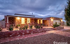 13 Summer Drive, Buronga NSW