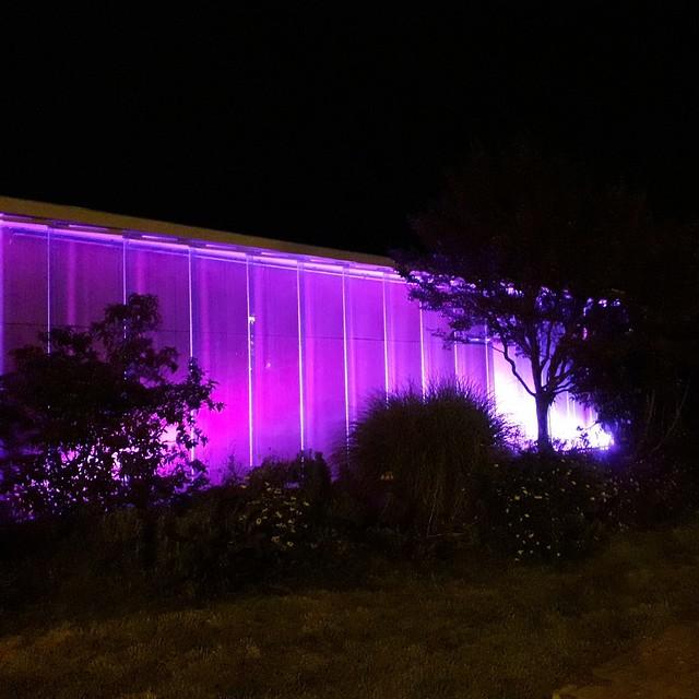 Photo 3 - Illumination Octobre rose
