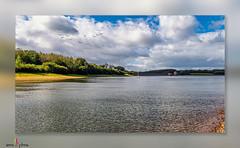 Photo of Lake shoreline