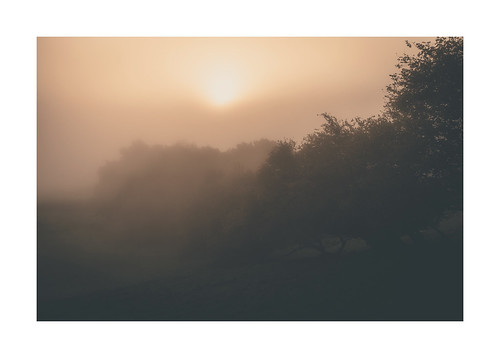 "Secret Dawn • <a style=""font-size:0.8em;"" href=""http://www.flickr.com/photos/110479925@N06/50411514292/"" target=""_blank"">View on Flickr</a>"
