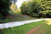 Cathkin park.