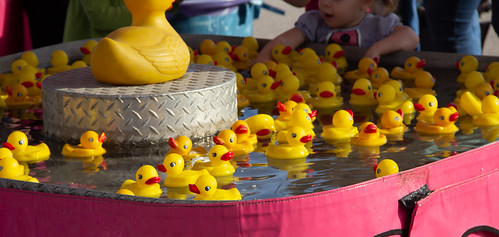 Carnival Duck Game