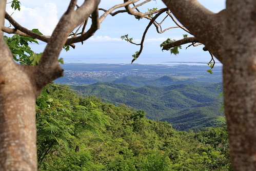 Trinidad coast from above