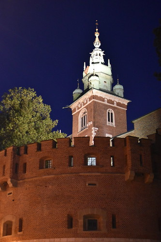 The Royal Castle at Night