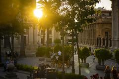 Plaza del Triunfo y Archivo de Indias