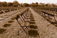 2020.10.04 National COVID-19 Remembrance, Washington, DC USA 278 19016