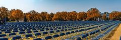 2020.10.04 National COVID-19 Remembrance, Washington, DC USA 278 19018